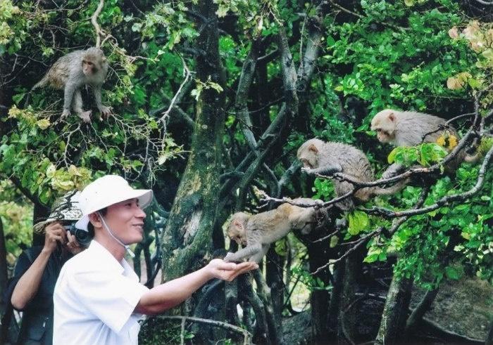 Đảo rều - Cẩm Phả